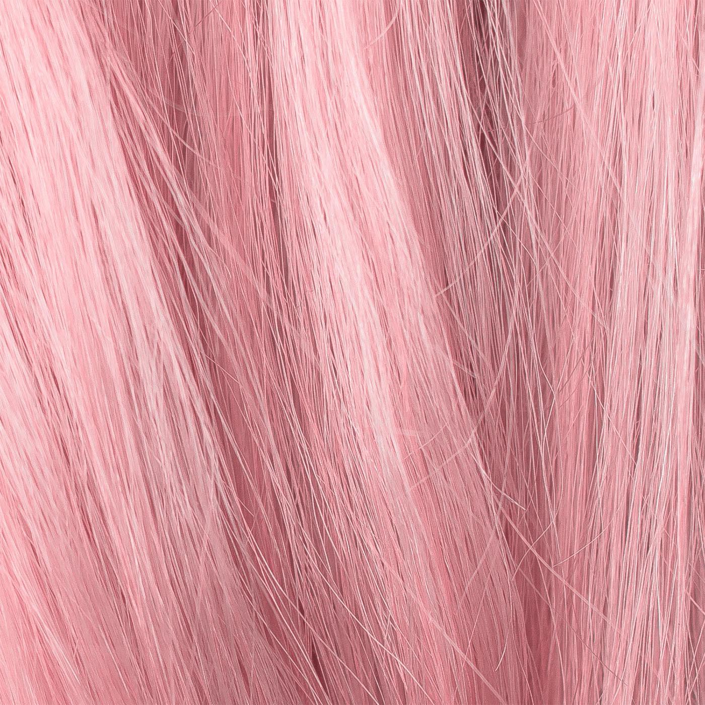 Imagen de Flamingo
